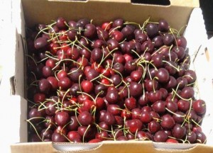Washington Cherries