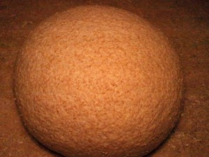 Rising Desem Bread Dough