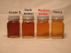 Medium Amber Grade Maple Syrup