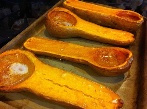 roasted butternut squash 500 px