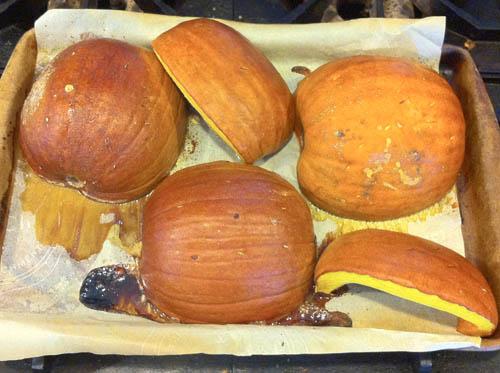 roasted pumpkin 500 px