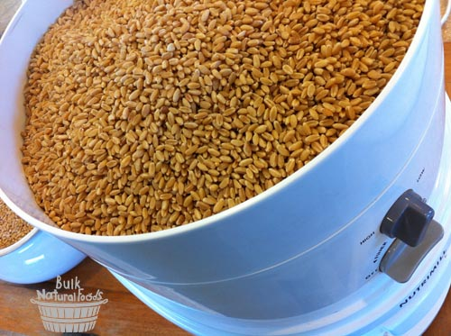 Nutrimill grain mill and wheat