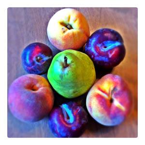 Plums Pears Peaches Jason