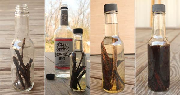 Perpetual Vanilla Extract