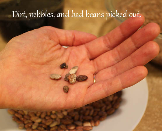 Dirt, pebbles, and bad beans picked out.