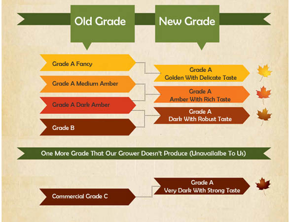 Chart of New Maple Grades