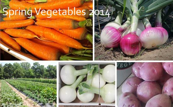 Spring Vegetables 2014 copy