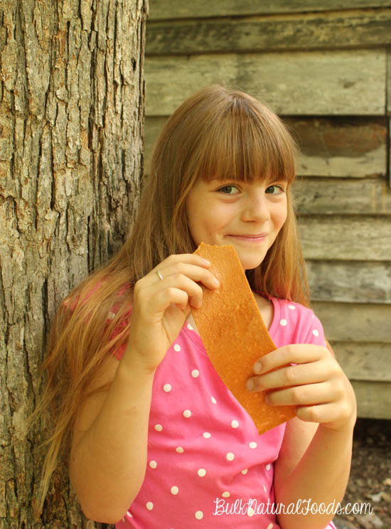 Homemade Fruit Leather: a great snack for kids.