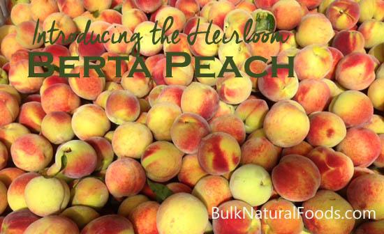 heirloom berta peaches   Bulk Natural Foods