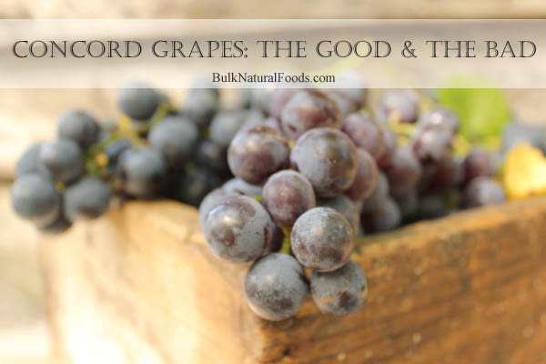 Concord Grapes The Good And The Bad