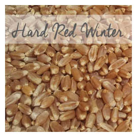 Hard Red Winter Wheat W Padding