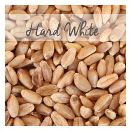 Hard White Wheat W Padding