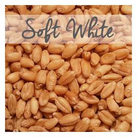 Soft White Wheat W Padding