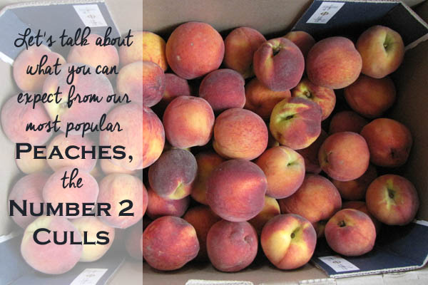 Let's Talk About Number 2 Cull Peaches